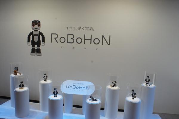 robo-1.jpg