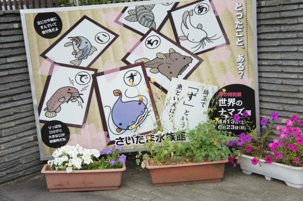 sai-sui-0601-3.jpg
