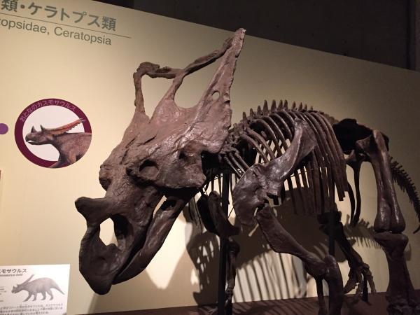 the-dinosaur-expo-2016-4.jpg